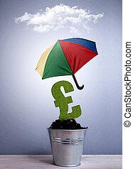 financier, assurance