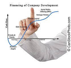 Financing of company development