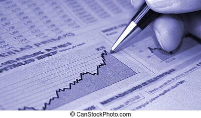 finans, rapport