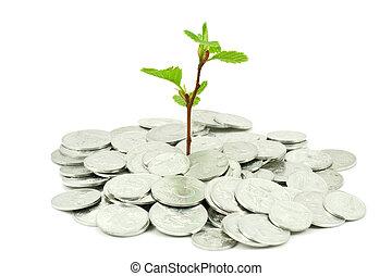 finansowe pojęcie, wzrost