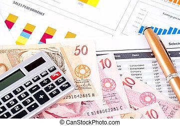 finanzielles diagramm, und, datasheet., brasilianisch, geld, und, pen.