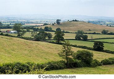 finca, colina, de, quainton, colina, inglés, verano