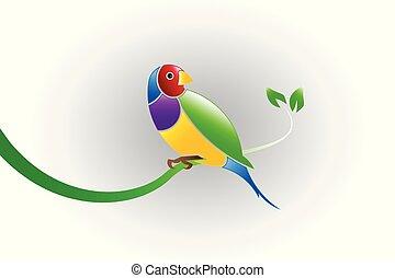 Finch bird - Finch beautiful colorful bird on a branch leaf....