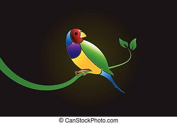 Finch bird on tree branch - Finch beautiful colorful bird on...