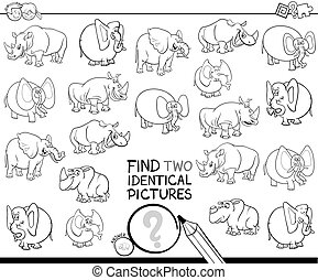 find two identical animal pictures color book - Black and...
