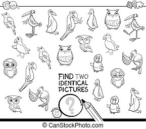 find two identical bird pictures coloring book - Black and...