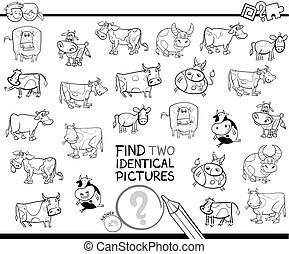 find two identical cows educational color book - Black and...