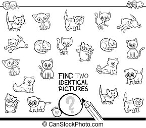 find two identical kitten pictures coloring book - Black and...
