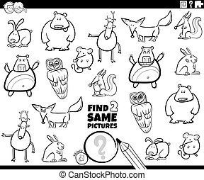 Black and White Cartoon Illustration of Finding Two Same Pictures Educational Game for Children with Funnt Wild Animal Characters Coloring Book Page