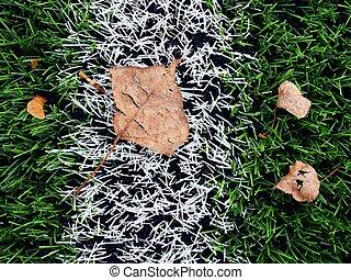 fine, football, plastica, verde, torba, season.