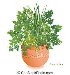 Fine herbs or Fines Herbes garden for traditional French cooking, left to right: Chervil, French Tarragon, Sweet Marjoram, Chives, Italian Parsley in round clay flowerpot planter with embossed floral design. EPS8 compatible. See other herbs and spices in this series.