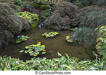 Fine pond with lilies