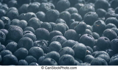 Fine Spray Keeps Blueberries Fresh - Fine water mist is...