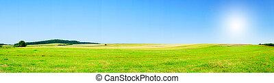 Fine summer panorama of field.