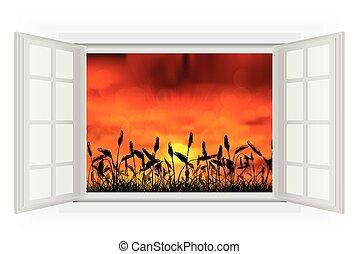 finestra aperta, tramonto, natura