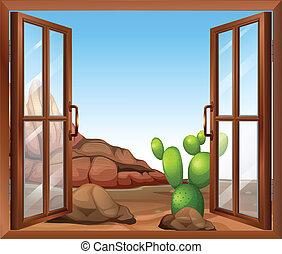 finestra, cactus