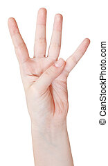 finger counting four - hand gesture isolated on white...