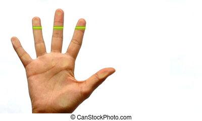 Finger Print Scanner - Finger Print scanner granting access.