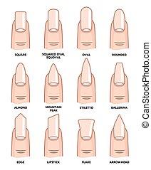 fingernails, kierunki, fason