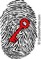 Fingerprint and key