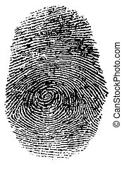 Fingerprint - Detailed fingerprint with clipping Path