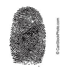 Fingerprint - Highly detailed  illustration of a fingerprint