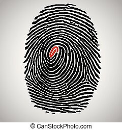 Fingerprint illustration, vector