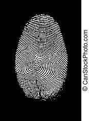 Fingerprint Isolated on Black High Resolution Image.