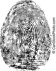Fingerprint, silhouette vector. Dactylogram isolated on...