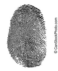 fingerprint - thumb print on white background