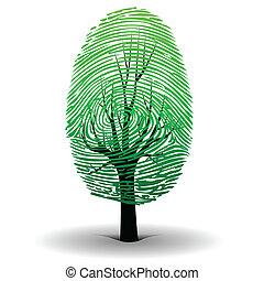 Fingerprint tree - Illustration of the fingerprint as a ...
