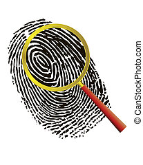 Fingerprint under a magnifier on a white background