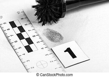 Fingerprint - View of a fingerprint revealed by printing.