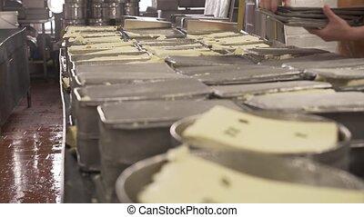 Finished milk product at production line - Finished fresh...