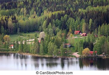 finlandês, campo
