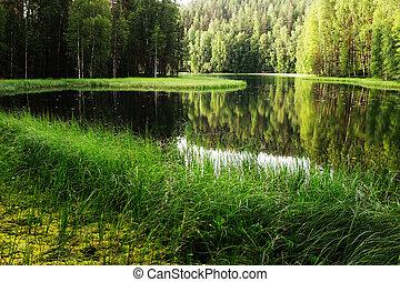 finlande, rivière, vue