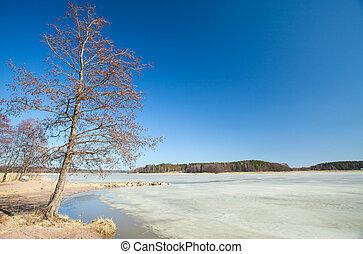 finlande, tôt, méridional, printemps