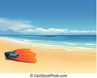 Fins on the beach