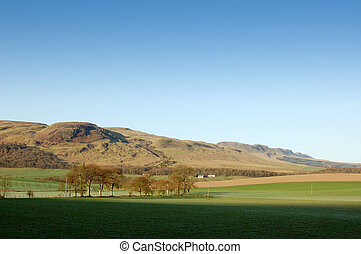 fintry hills early morning - Strathendrick and the Fintry...