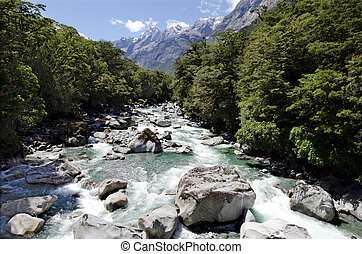 Fiordland - New Zealand - Landscape of Cleddau river in...