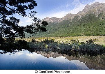 Fiordland - New Zealand - The Mirror lake in Fiordland, New ...