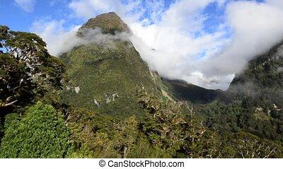 fiordland, vue, paysage, nzl