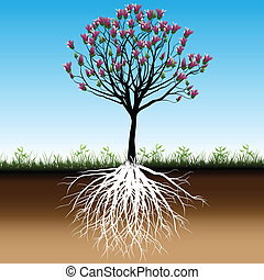 fiore, albero