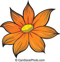 fiore arancia
