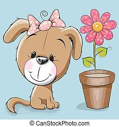 fiore, cane