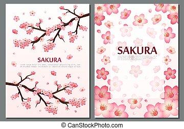 fiore, ciliegia, cartelle, augurio