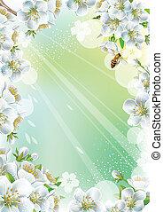 fiore, ciliegia, cornice