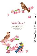 fiore, ciliegia, uccelli, scheda, invito