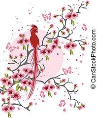 fiore, ciliegia, uccello, fondo