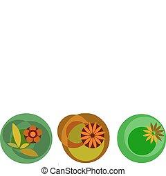 fiore, colorito, icone, astratto, illustrazione, vettore, bianco